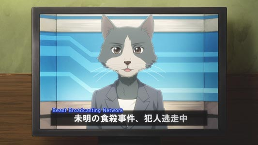 A furry cat girl, unnamed news anchor.
