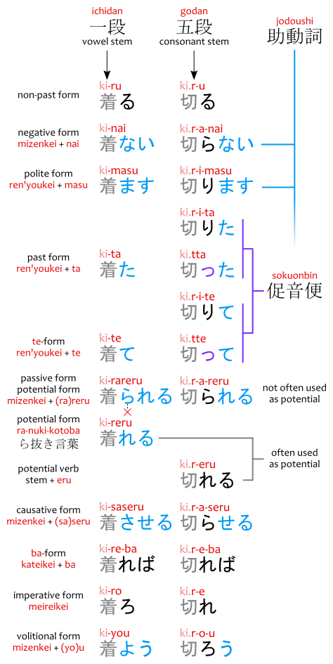 ichidan vs. godan verb conjugation diagram