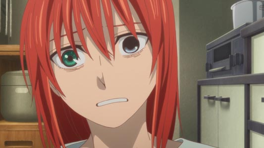 Hatori Chise 羽鳥智世, example of transplanted heterochromatic eyes.